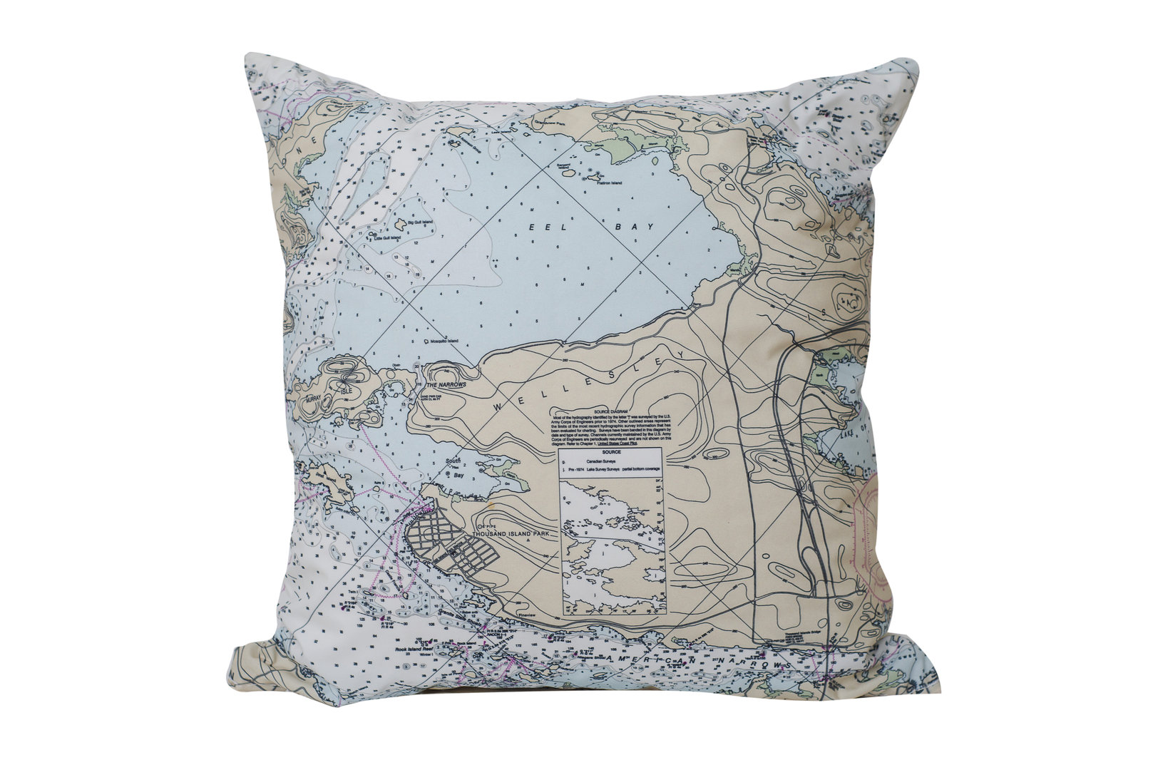 TI Park Chart Pillow